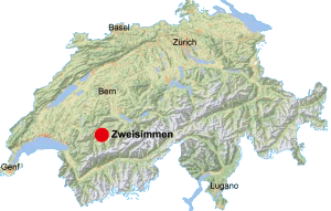 Pilotenausbildung Schweiz Alpine Flugschule Zweisimmen